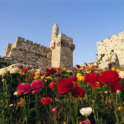 Authentic Israel - Travel Experiences for All Ages